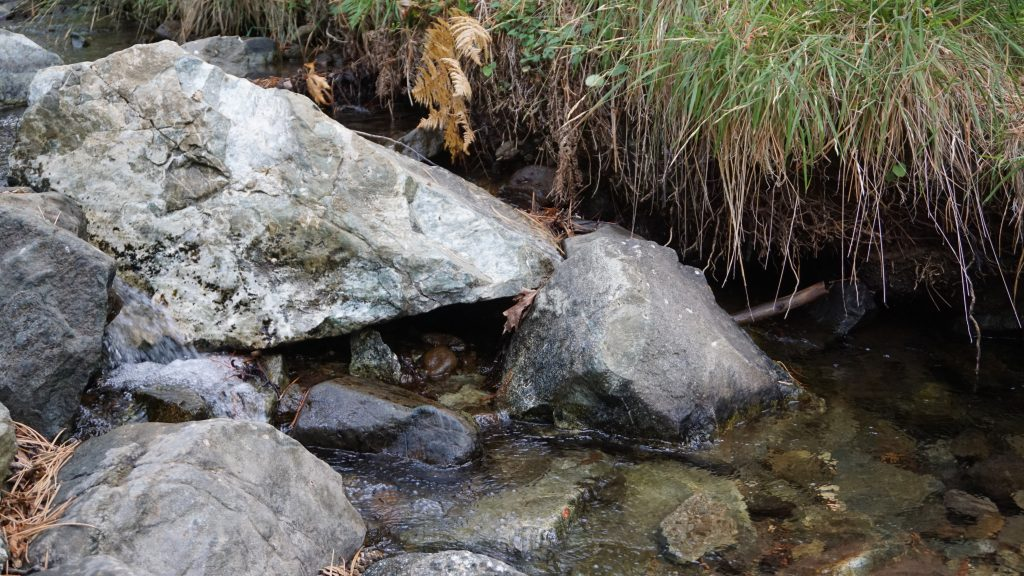 Kalidonia Trail
