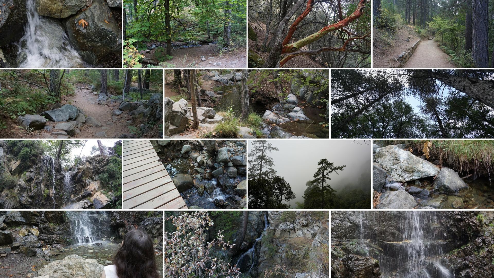Kalidonia Nature Trail