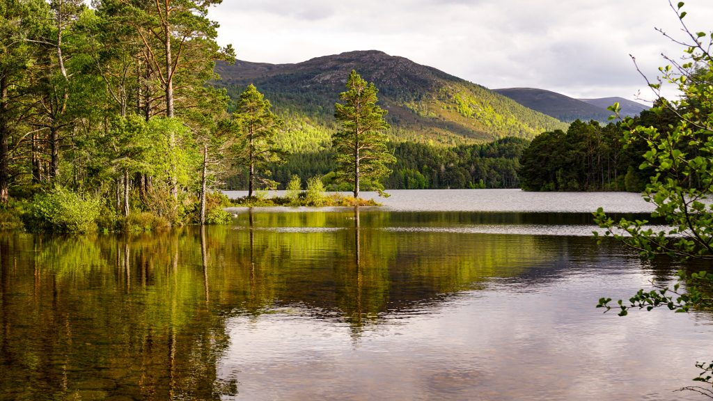View of Loch an Elilein